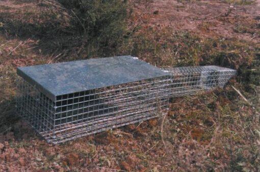 Jaula Trampa Conejos Madriguera Vacunación