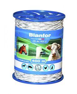 blanfor